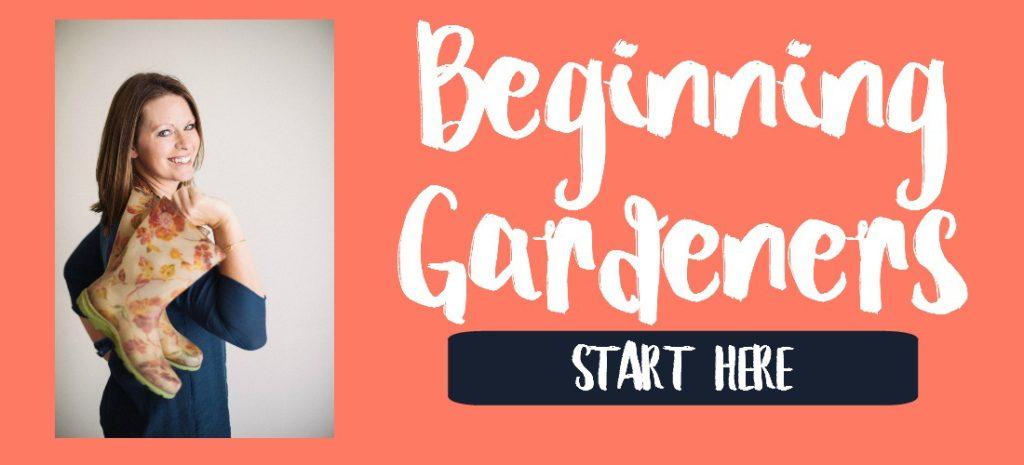 Beginning-Gardener-Header-2-1024x465.jpg
