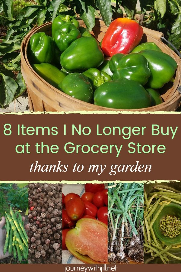 8 items I no longer have to buy at the store thanks to my garden