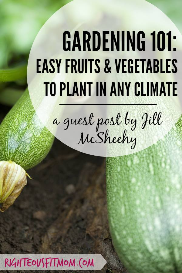 Fruits & Vegetables to Plant in Any Climate | Journey with Jill | Sarah Forgrave