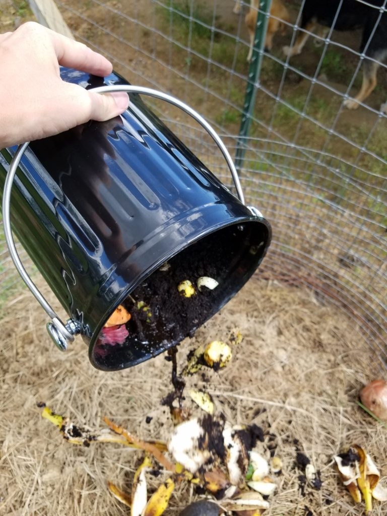Empty the Compost Crock   Journey with Jill