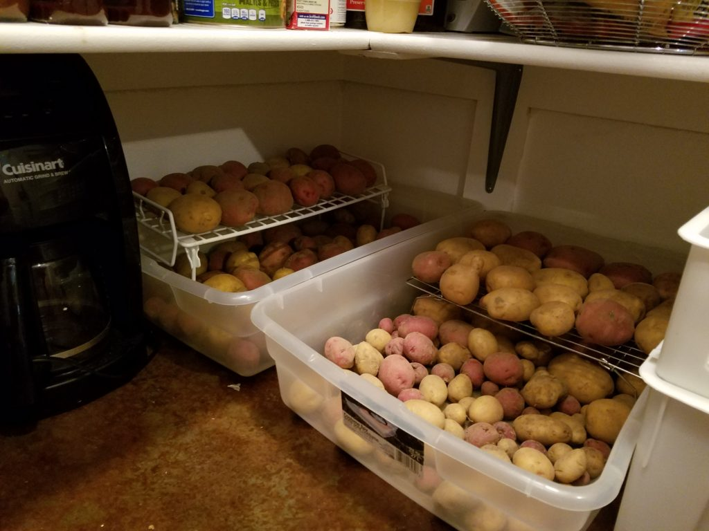 Storing Potatoes in the Pantry | Journey with Jill