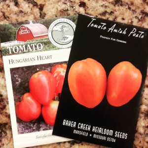 Amish Paste and Hungarian Heart Tomato Seeds | Journey with Jill