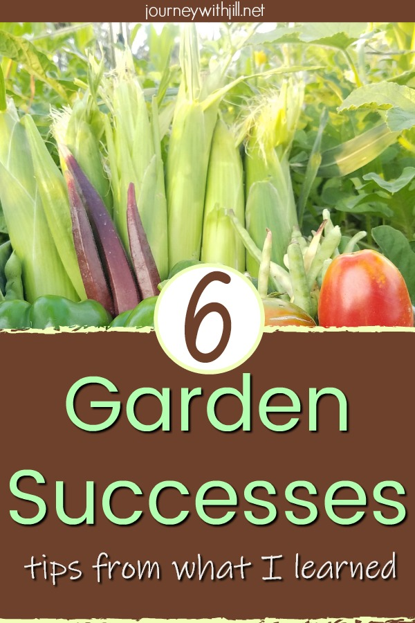 6 Garden Successes and Tips