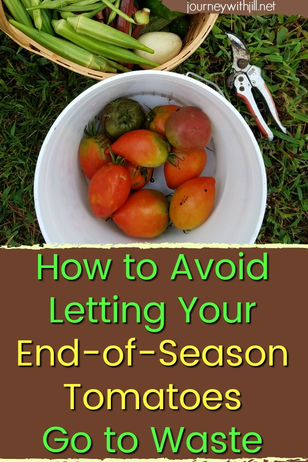 How to Avoid Letting Your End of Season Tomatoes Go to Waste