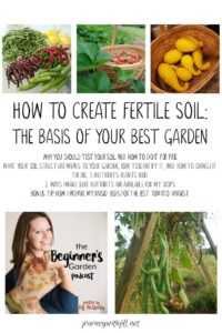 How to Create Fertile Soil: The Basis of Your Best Garden