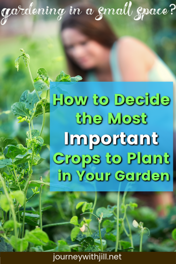 How to Decide What to Plant in Your Garden