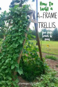 AFrame-Trellis-200x300.jpg