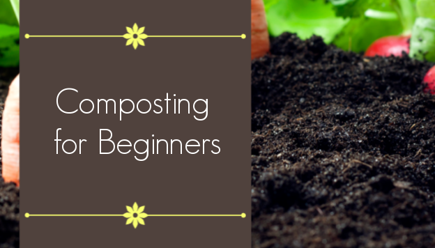 Composting for Beginners: a Quick and Easy Guide