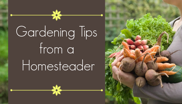 Best Gardening Tips from Real-Life Homesteader Melissa K. Norris
