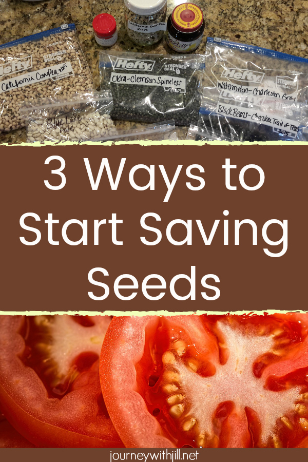 3 Ways to Start Saving Seeds
