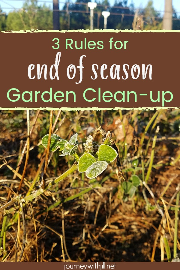 3 Rules for End of Season Garden Clean-up