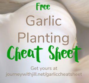 FREE Garlic Planting Cheat Sheet