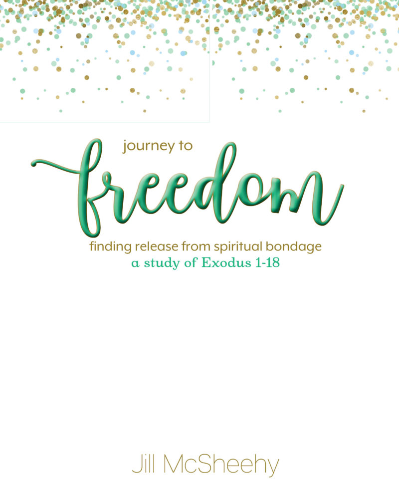 Journey to Freedom: finding release from spiritual bondage, a study of Exodus 1-18