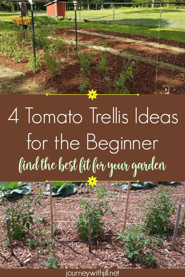 4 Tomato Trellis Ideas for the Beginner -- Find the Best Fit For Your Garden