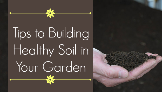 Building Healthy Soil – Interview with the Organic Gardener Podcast's Jackie Marie Beyer