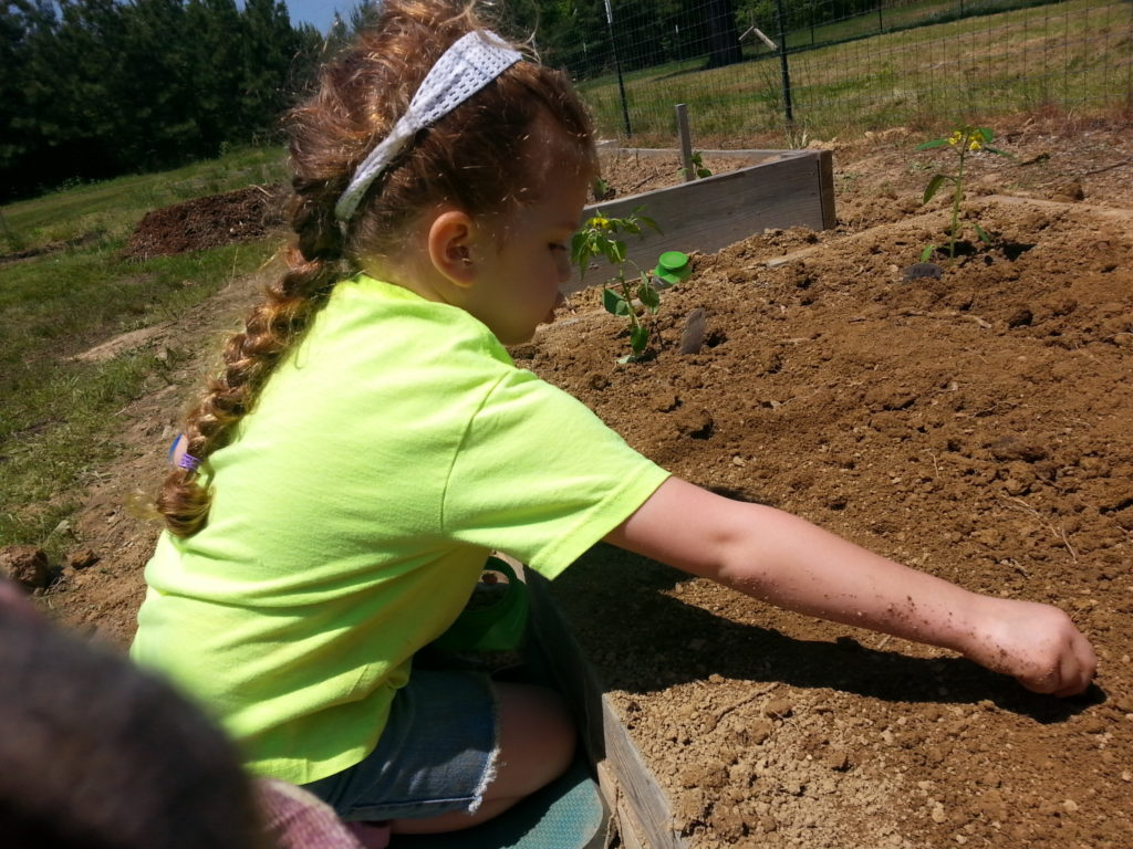child planting seeds in the garden