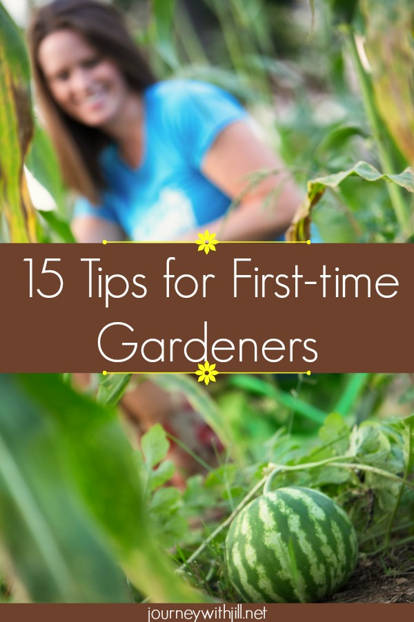 15 Tips for First-time Gardeners: Experienced Gardeners Share Their Advice