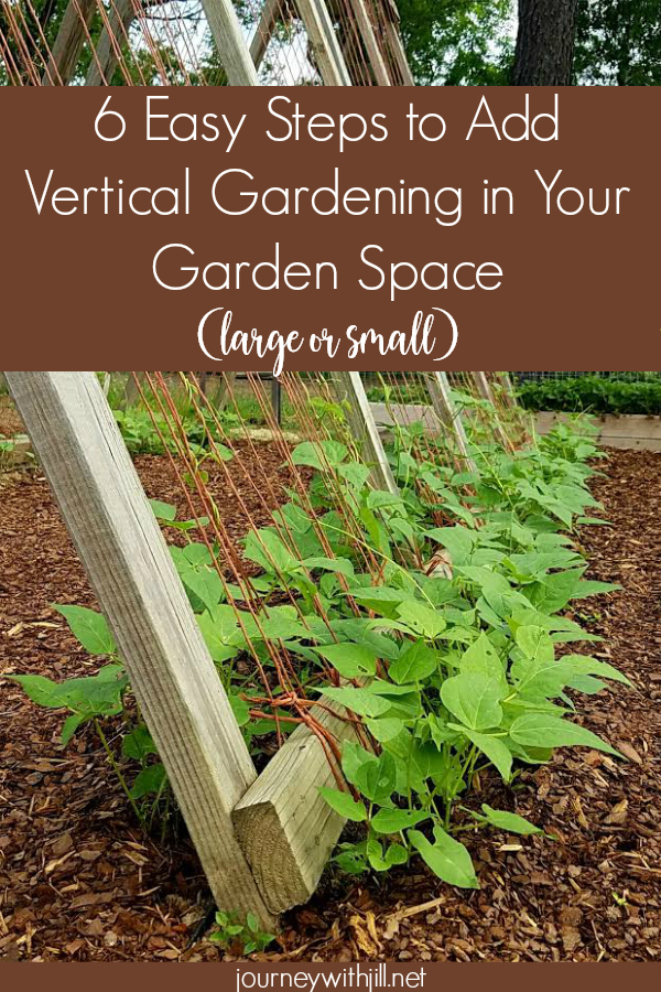 6 Easy Steps to Add Vertical Gardening in Your {small or large} Garden Space