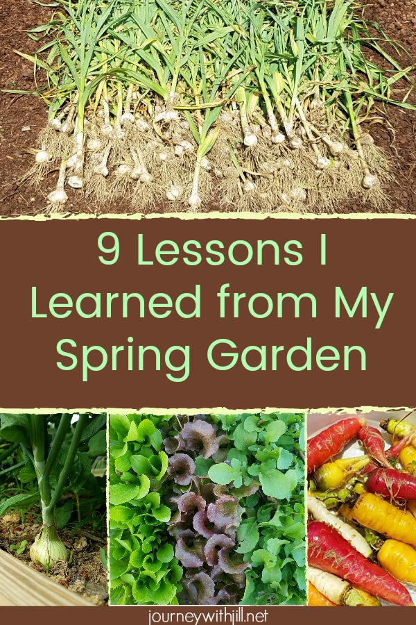 9 Lessons Learned from the Spring Garden
