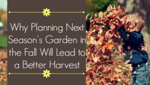 Why Planning Next Season's Garden in the Fall will Lead to a Better Harvest