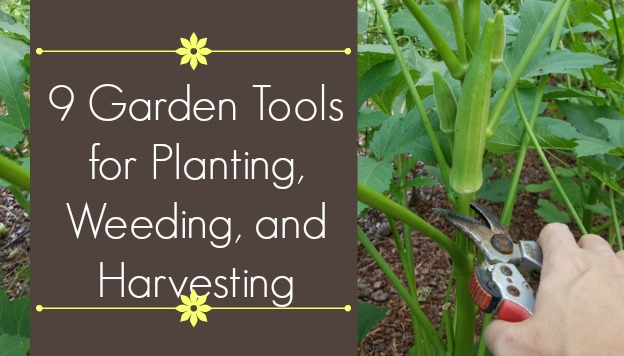 9 Garden Tools for Planting, Weeding, and Harvesting