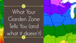 What your garden zone tells you