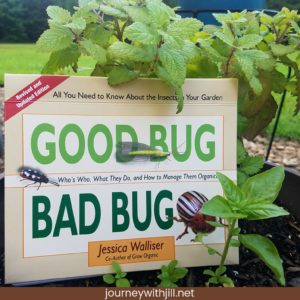 Good Bug Bad Bug | 9 Books for Beginning Gardeners