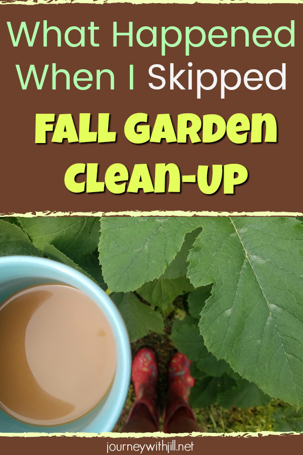 What Happened When I Skipped Fall Garden Clean-Up