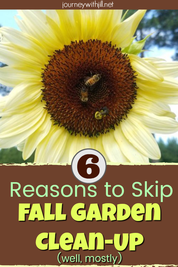 Reasons to Skip Fall Garden Clean-Up