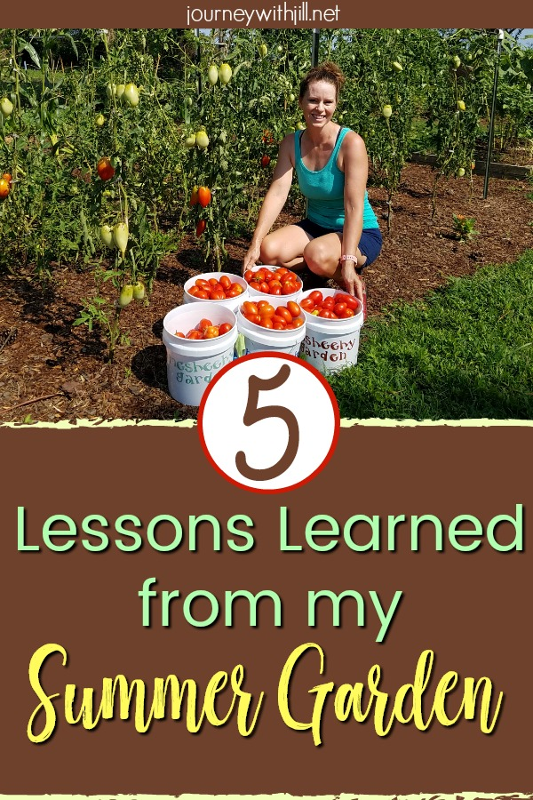 Lessons Learned from my Summer Garden