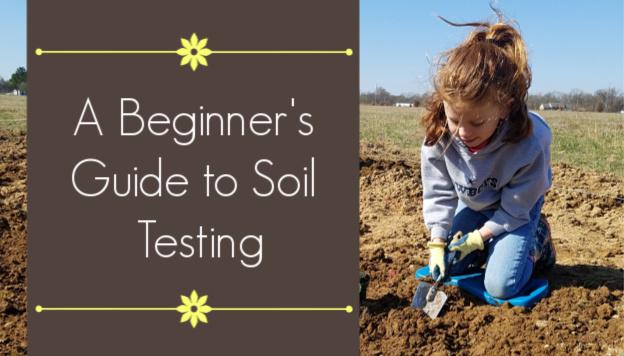 Garden Soil Testing: A Beginner's Guide
