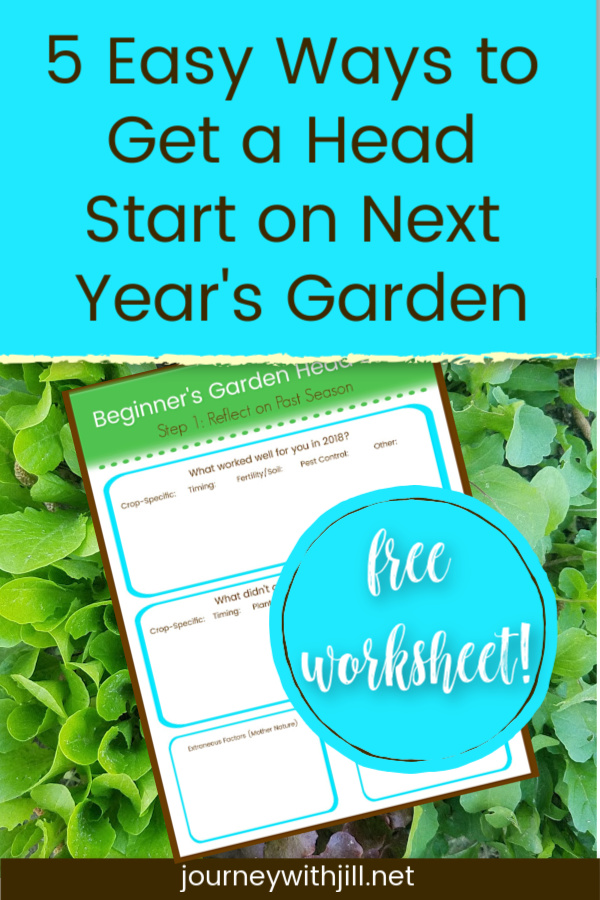 5 Easy Ways to Get a Head Start on Next Year's Garden