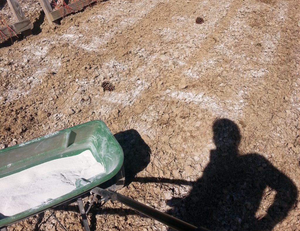 adding lime to soil