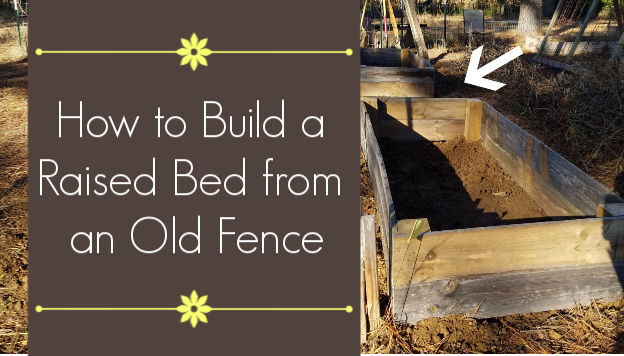 How to Build Raised Bed