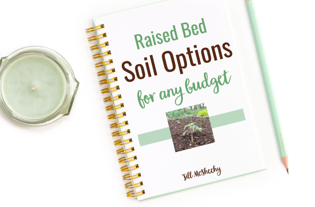 Raised Bed Soil Options for Any Budget