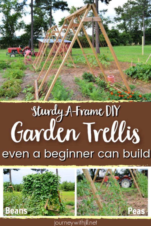 How To Build An A Frame Garden Trellis The Beginner S Garden