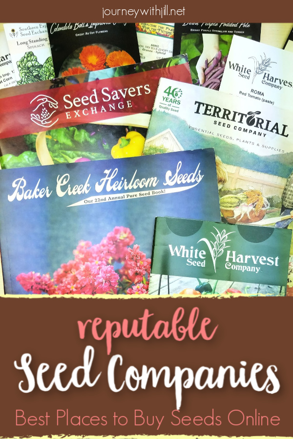 Reputable seed companies - where to buy seeds online