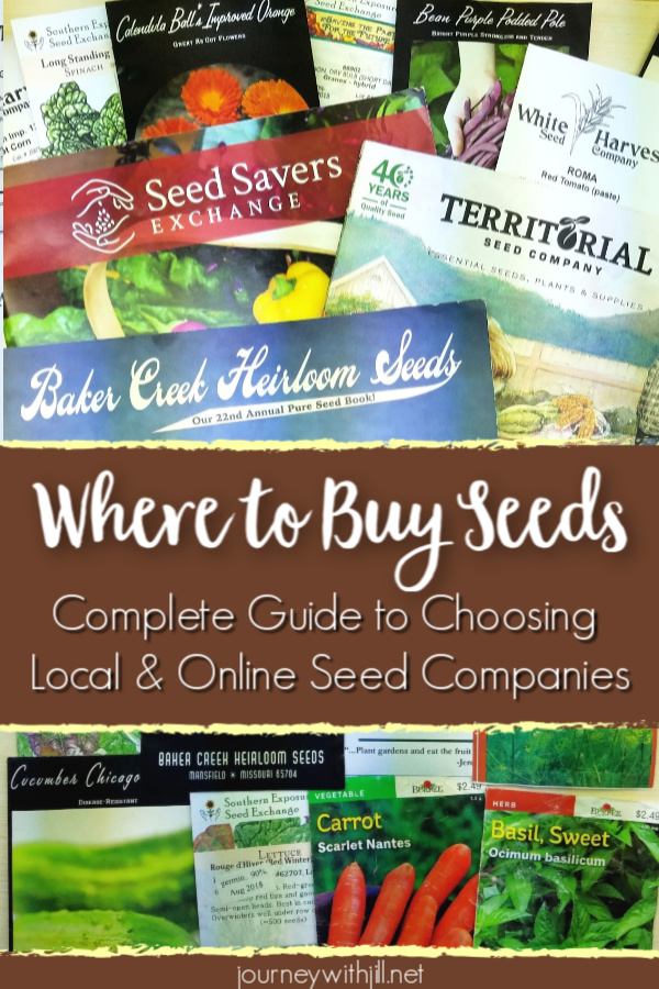 Where to Buy Seeds - Complete Guide to Choosing Local and Online Seed Companies