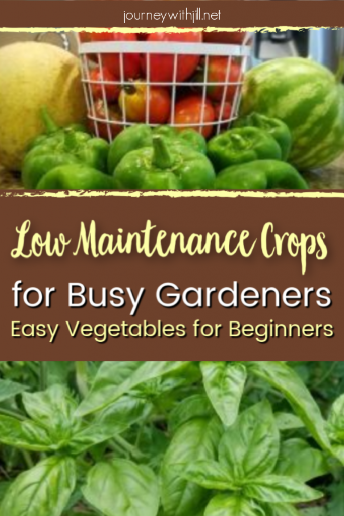 low maintenance crops