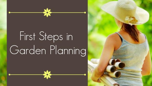 Vegetable Garden Planning: 3 Steps to Get You Started