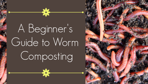 Worm Composting: A Step-by-Step Guide for Beginners
