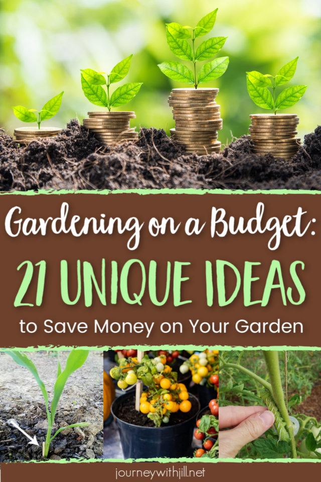 Gardening on a Budget - 21 Unique Ideas to Save money Gardening