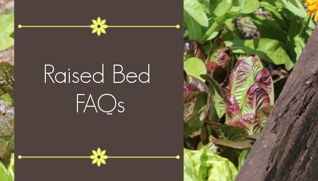 Raised Bed FAQs