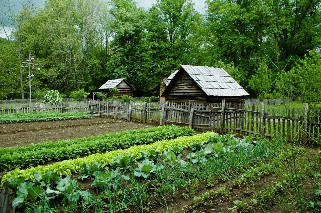 in ground garden bed benefits