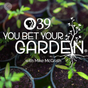 you bet your garden with mike mcgrath