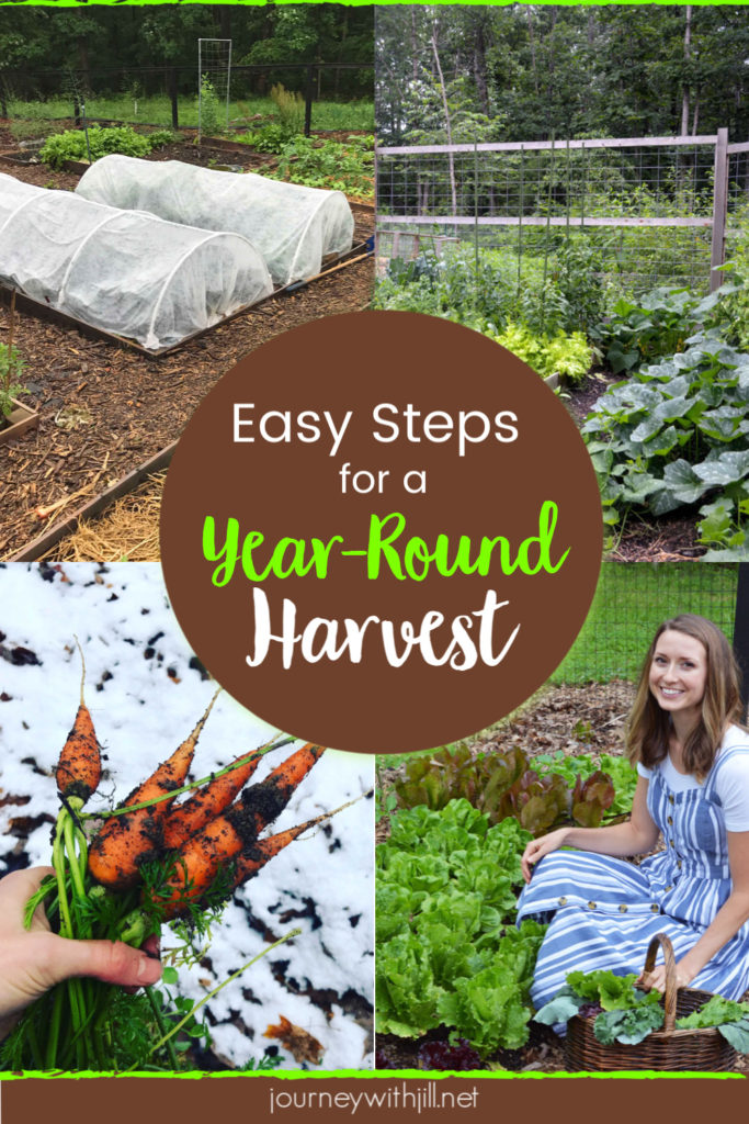 Easy Steps for a Year-Round Harvest