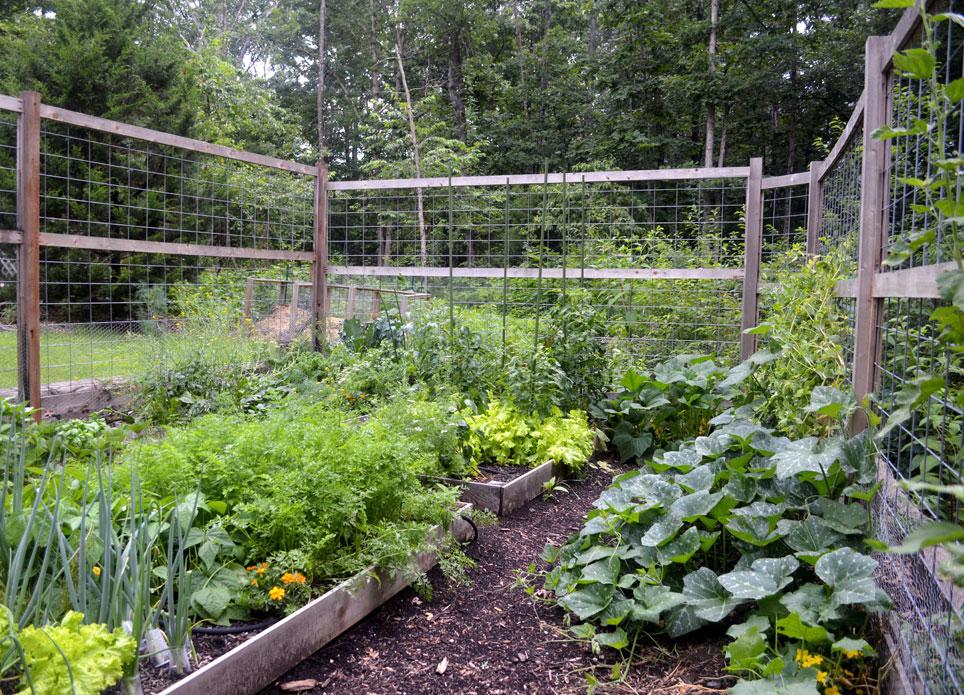 seasonal harvest garden