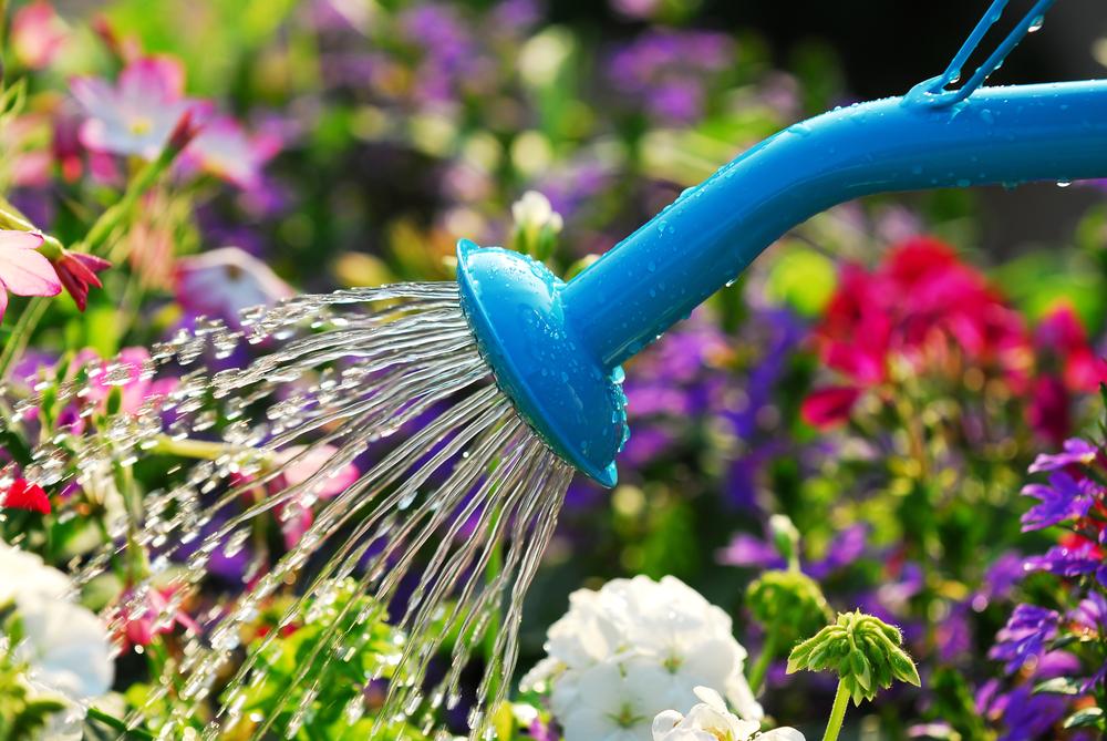 hand watering for garden irrigation