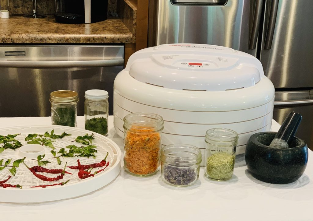 nesco dehydrator for preserving herbs and vegetables