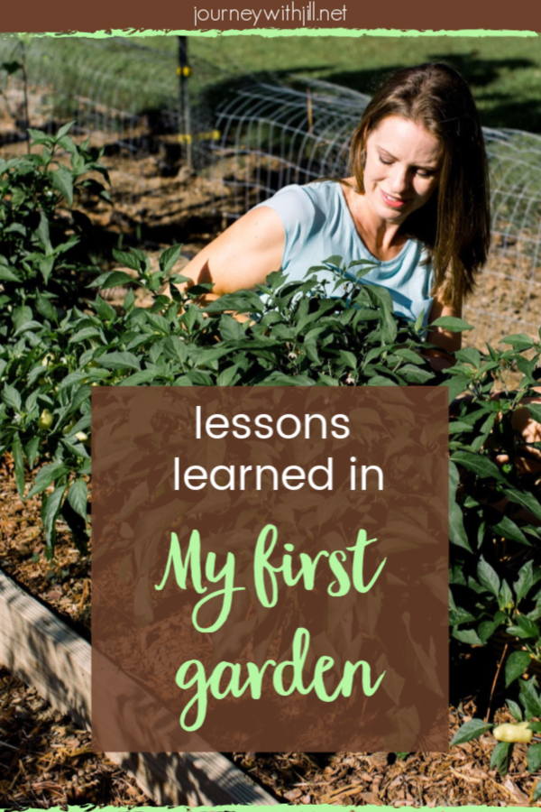 My First Garden: Mistakes and Successes